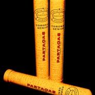 Partagas Corona Senior (Tubo)