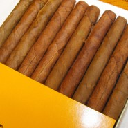 Partagas Clubs