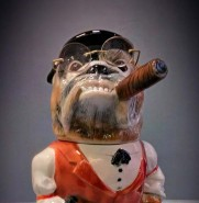 Dealer Bulldog